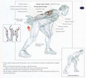Patada-tríceps-con-mancuerna-ticogym